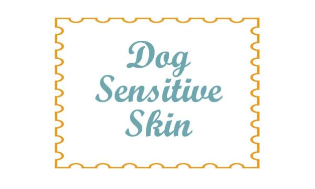 Dog Sensitive Skin