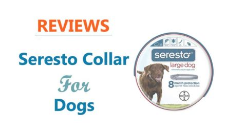 Seresto Collars For Dogs Reviews